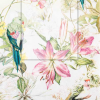Servetti, flora and fauna