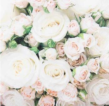 Servetti, rose