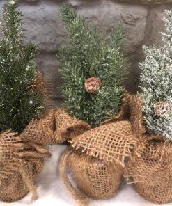 Havupuu juuttipussissa