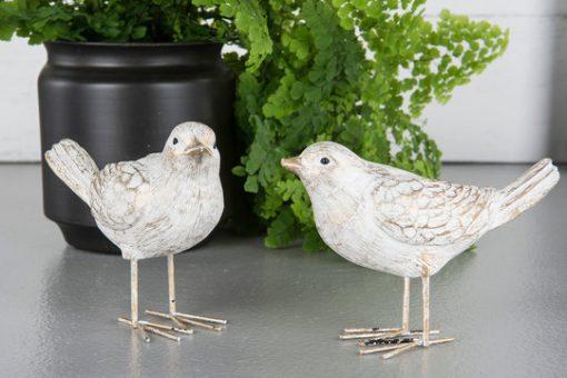 Lintu, valkoinen/kulta