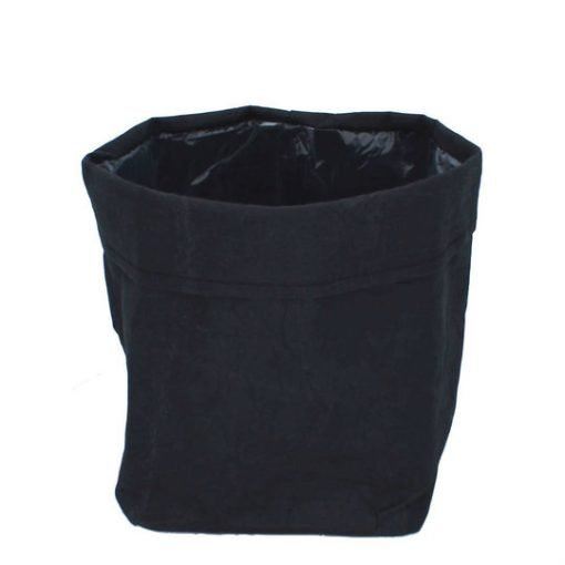 Paperipussukka, musta