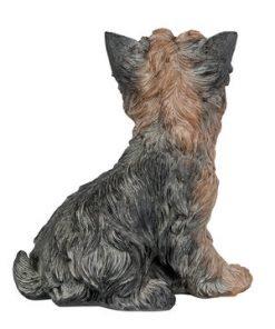 Koira-koriste, yorkshirenterrieri