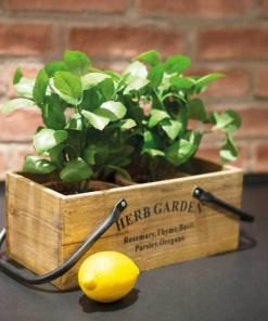 Laatikko Herb Garden